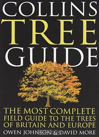 Owen Johnson / Collins Tree Guide: The Most Complete Guide to the Trees of Britain and Europe / The definitive, fully-illustrated guide to the trees of Britain and non-Mediterranean Europe. This brand-new field guide ...